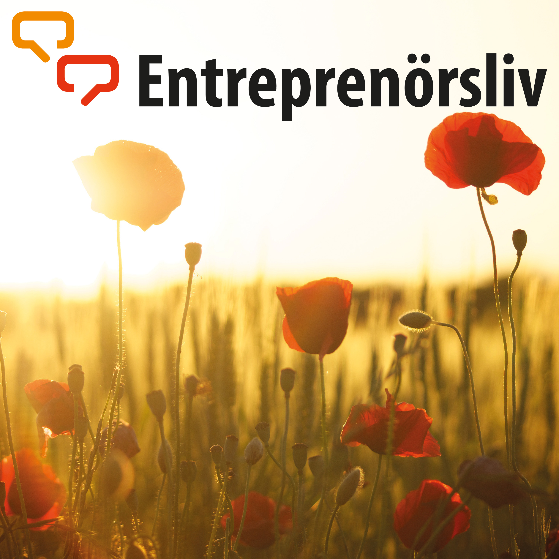 Entreprenörsliv
